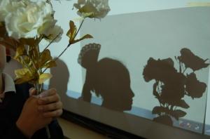 sombra ficticia 2_fallera con flores