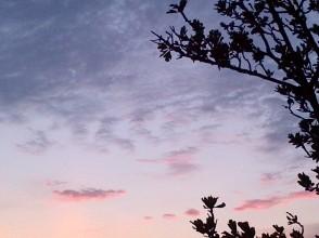 el cielo solo es azul